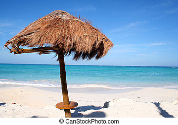 fantastic beach of Cancun - this is the fantastic beach of...