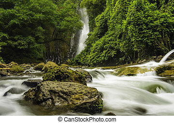 Mountain Stream-Costa Rica - Fast flowing mountain stream in...