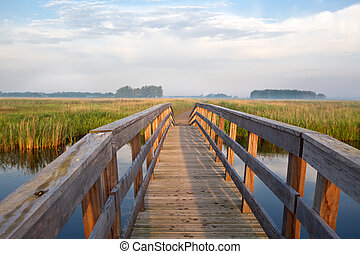 wooden bridge through river in morning - wooden bridge for...