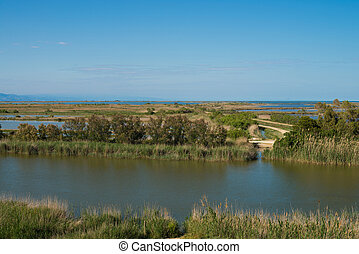 Ebro delta, with its wetlands spreading all over the natural...
