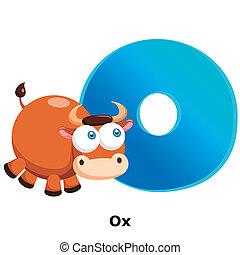 animal alphabet O - illustration of isolated animal alphabet...