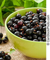 black currants in a bowl on wooden background