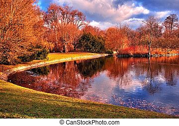 Pond in the park