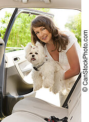 Getting dog into a car - Beautiful woman getting her dog...