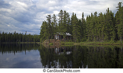 cabin in the wild