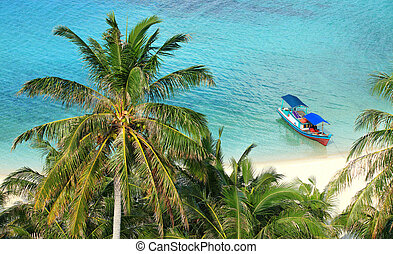 Scenic of a tropical paradise beach