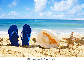 Flip flops, seashell and starfish on sandy beach - Blue Flip...
