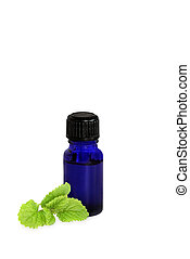 Lemon Balm Herb Oil