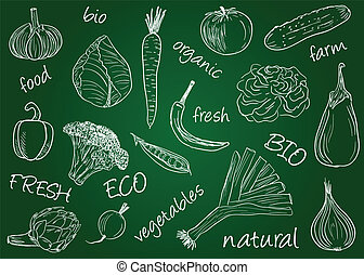 Vegetables doodles - school board - Illustration of...