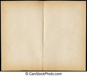 Two blank vintage paperback book pages isolated on black.