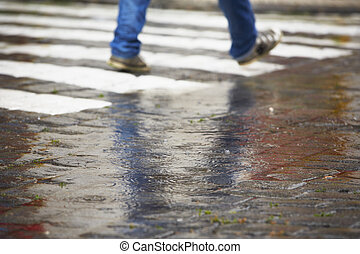 Zebra crossing in rain - Man is walking on the zebra...