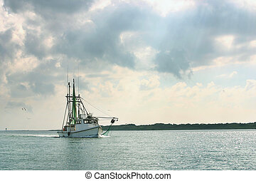 Shrimp boat returns from day of fishing - A shrimp boat on...