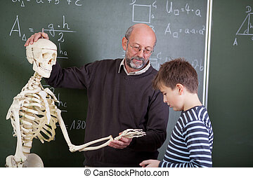 Teacher With Skeleton Teaching Student In Classroom