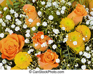 various cut flowers, background - different types of blum, s...
