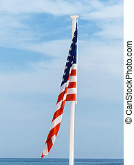 national flag of usa - national flag of the united states,...