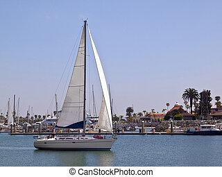 Sailboat in Point Loma Harbor. - Sailboat cruising near...