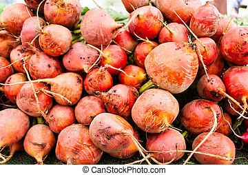 Root vegetables - Orange vegetable roots at a local farmers...
