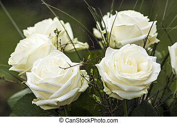 Bunch of white roses - White roses in a bunch