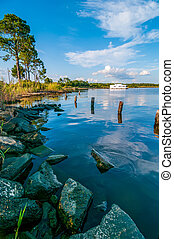 destin florida beach scenes - water life and beach scenes at...