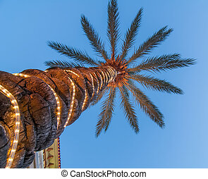 palm tree with lights - palm tree scenics at a luxury...