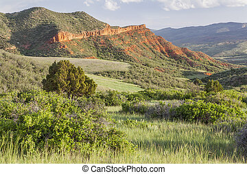 Colorado mountain ranch in early summer - Red Mountain Open...