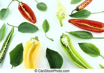 red hot chili - Colorful hot chili pepper on a white...