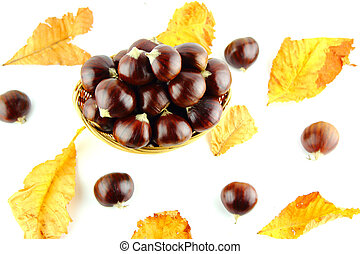 Sweet chestnuts in straw basket with leaves on white...