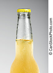 Beer bottle isolated Close up studio shot
