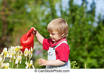 Little boy with his watering can - Little boy is watering...