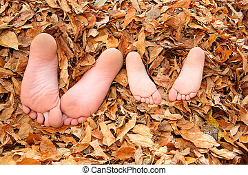 Kids buried in fall leaves - two young brothers are buried...
