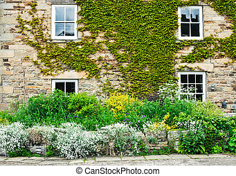 Cottage garden - Vibrant summer plants at the front of a...