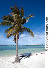 Bahia Honda State park - White sand beach on Lower Keys,...