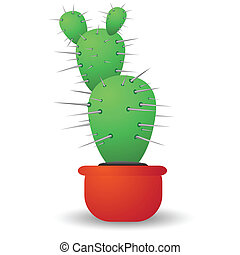 green cactus isolated on a white ba