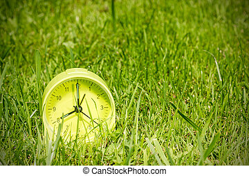 Alarm clock  in grass on the morning