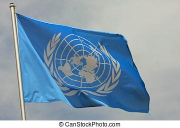 azul, bandera, ONU, unido, naciones, organización