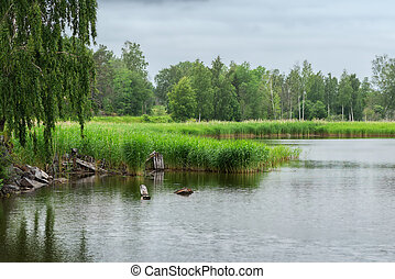 Lake during a light drizzle or rainfall, Sweden