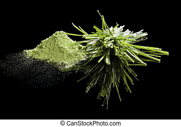 Green food supplements. - Wheatgrass and wheatgrass powder...