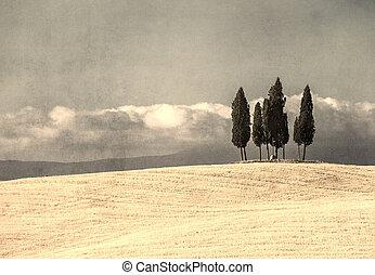vintage tuscan landscape