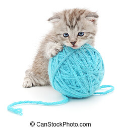 Cat with ball of yarn - Small funny kitten and clew of...