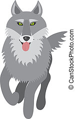 wolf, vector picture, front view, isolated on white...
