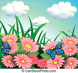 The two butterflies in the garden