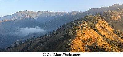 Panoramic views of the sunrise in the mountainous jungles of...