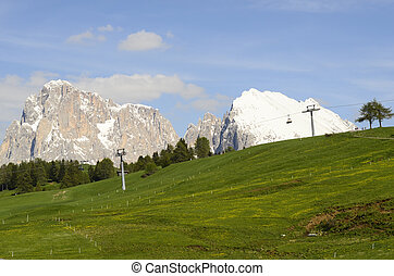 Italy, South Tyrol, Alpe di Suisi,