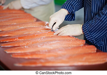 Male Workers Cutting Fishes With Knife - Cropped image of...