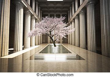 Cherry tree in the interior
