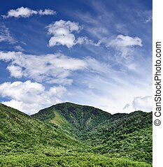 Smoky Mountains - Summer landscape in the Smoky Mountains...