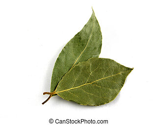 Seasoning, bay leaf