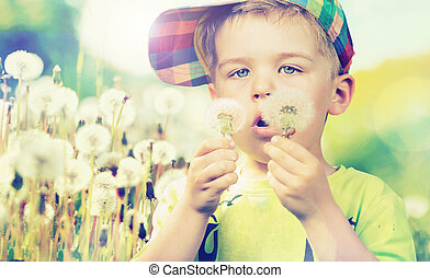 Cute boy staring at dandelions - Cute kid staring at...