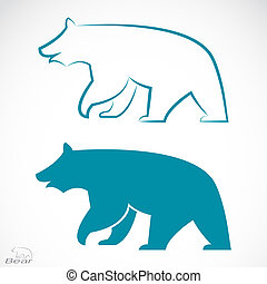 Vector image of an bear on white background