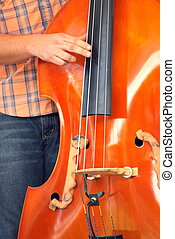 Upright string bass used in a music performance.